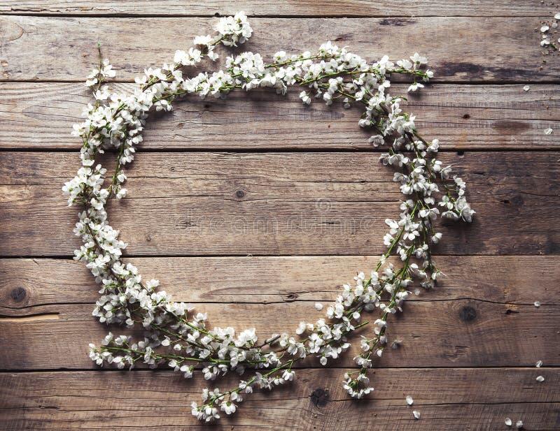 Struttura rotonda dai fiori dei fiori di ciliegia su fondo di legno annata fotografia stock libera da diritti
