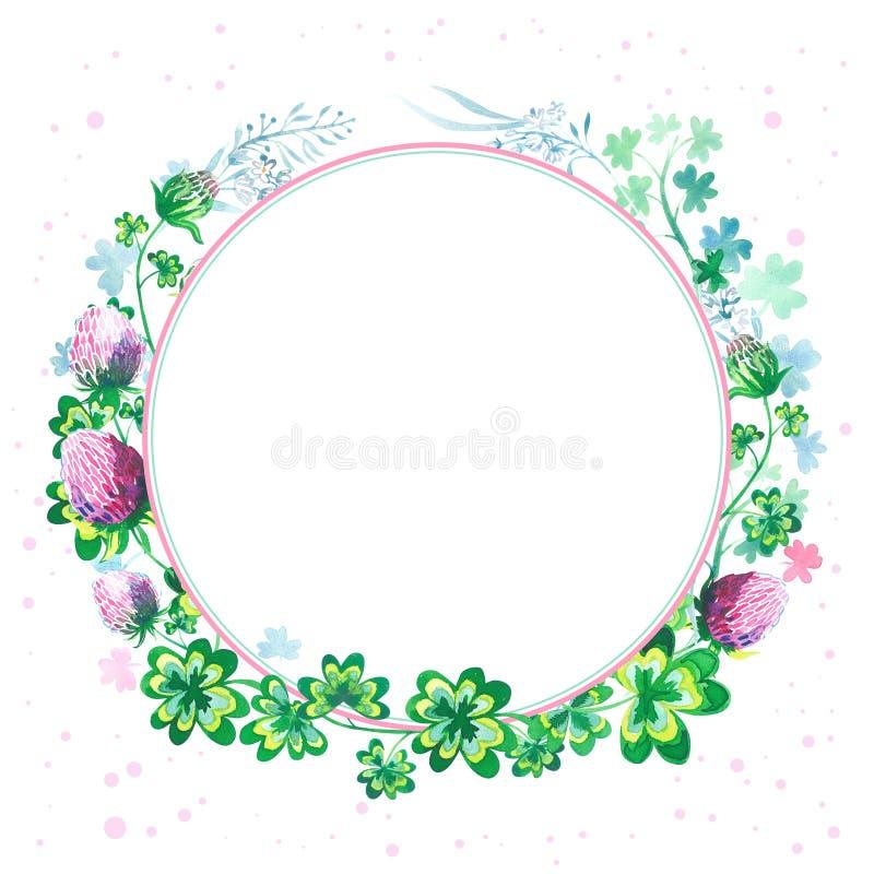 Struttura rotonda dell'acquerello botanico disegnato a mano con i fiori, i gambi e le foglie del trifoglio isolati su fondo bianc royalty illustrazione gratis