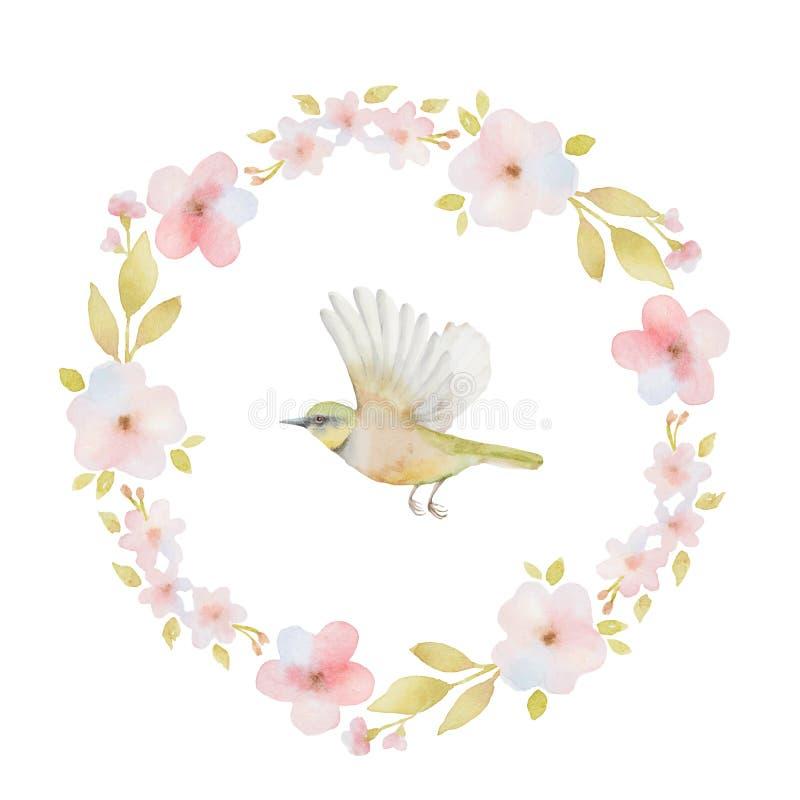 Struttura rotonda dell'acquerello dei fiori della molla e della a royalty illustrazione gratis