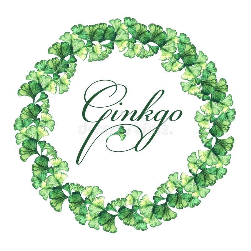 Struttura rotonda delle foglie verdi del ginkgo biloba watercolor illustrazione di stock