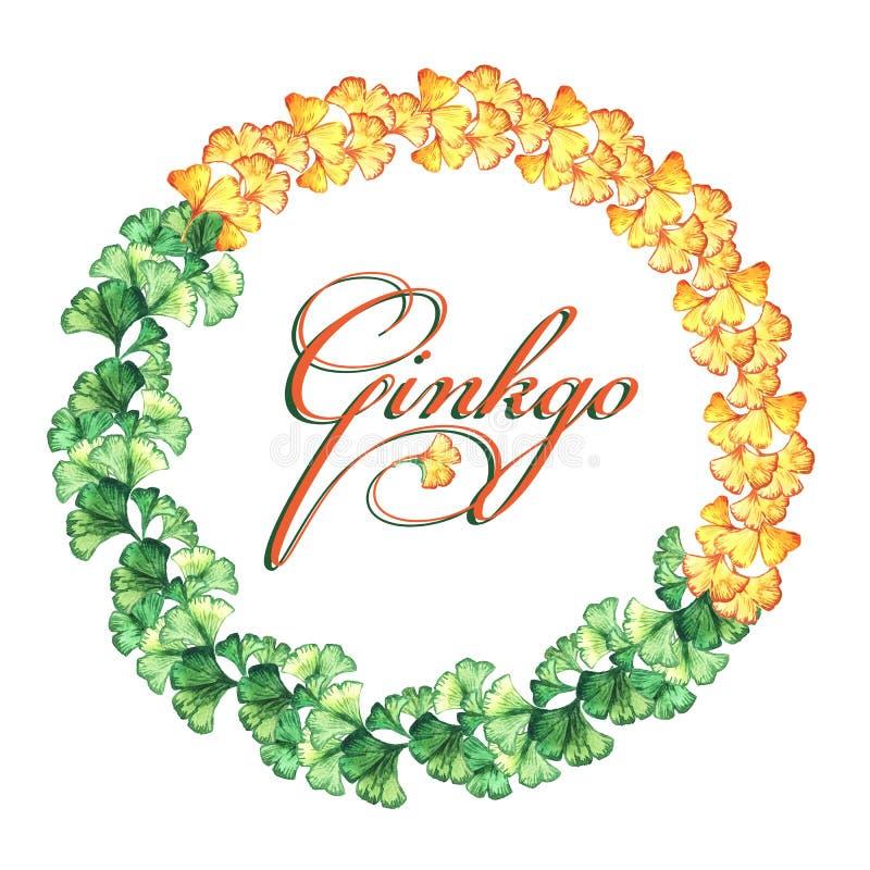 Struttura rotonda di giallo e foglie verdi del ginkgo biloba watercolor Stampa, invito, cartolina d'auguri illustrazione vettoriale