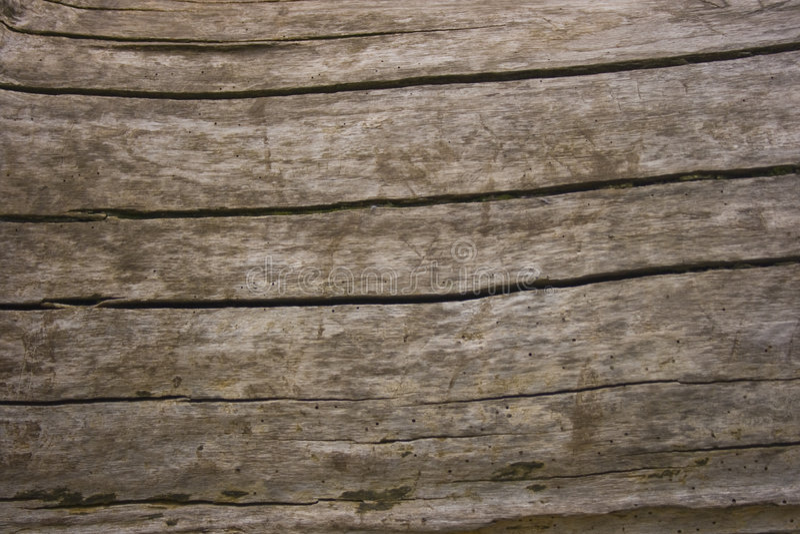 Struttura screpolata di legno di quercia fotografie stock