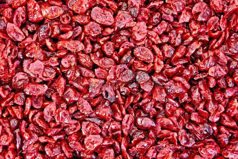 Struttura secca mirtillo rosso fotografia stock