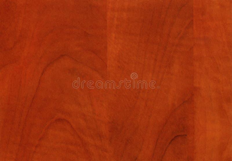 Struttura selvaggia di legno della pera del primo piano fotografia stock