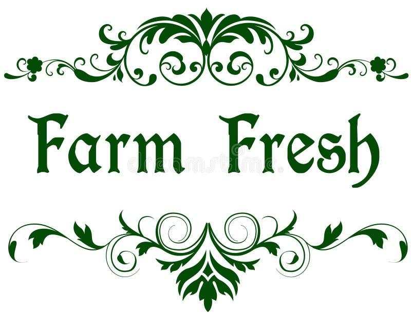 Struttura verde con il testo FRESCO dell'AZIENDA AGRICOLA illustrazione di stock