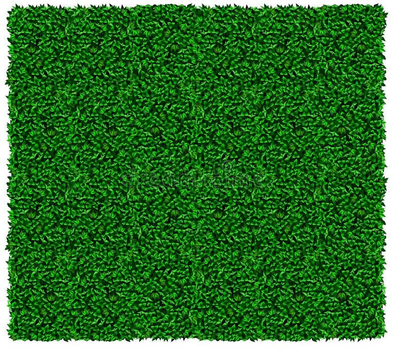Struttura verde della parete dell'edera o dell'uva royalty illustrazione gratis