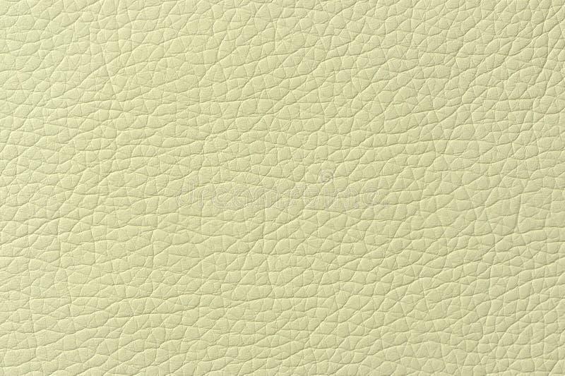Struttura verde pallida del fondo del cuoio sintetico fotografia stock libera da diritti