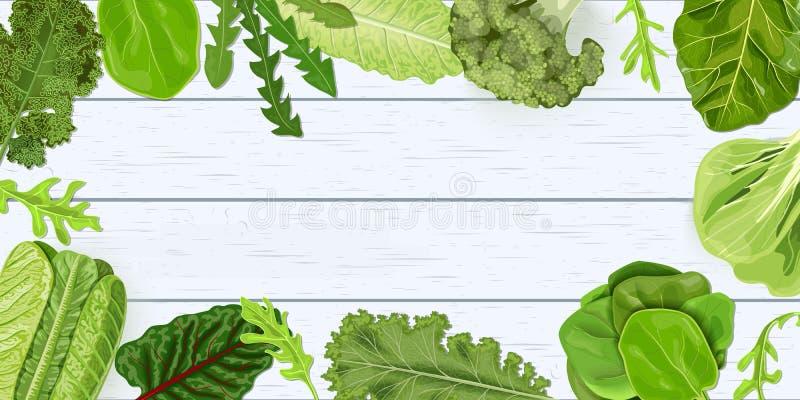 Struttura verde scuro degli ortaggi freschi sullo scrittorio misero di legno bianco Illustrazione di vettore per la decorazione,  illustrazione di stock