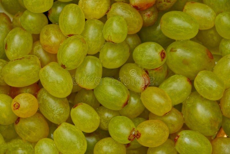 Struttura verde vegetativa di un mucchio dell'uva matura immagini stock libere da diritti