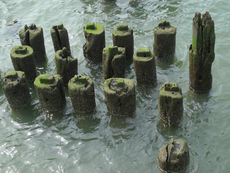 Strutture di legno su un pilastro lungo il fiume immagini stock