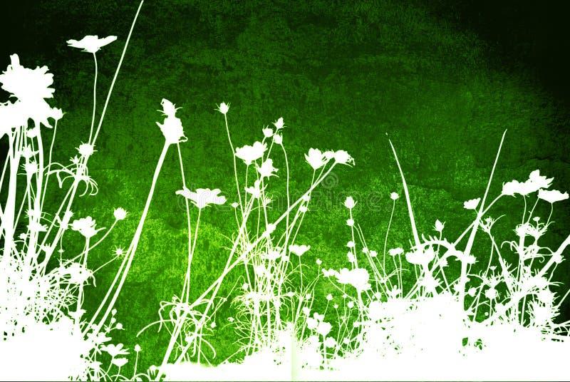 Strutture floreali illustrazione vettoriale