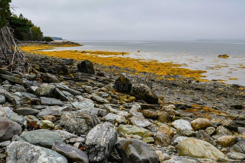Strutture sulla costa di Maine immagini stock libere da diritti