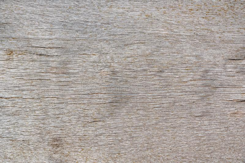 Strutturi il fondo di vecchio bordo del compensato con il modello orizzontale per il modello o modello di progettazione in costru fotografie stock libere da diritti