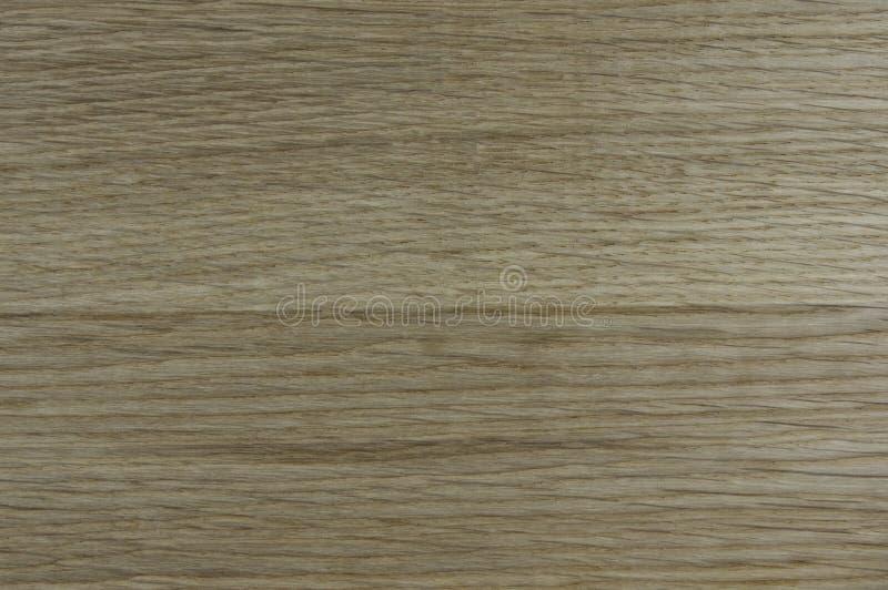 Strutturi il sollievo di legno, quercia immagine stock libera da diritti