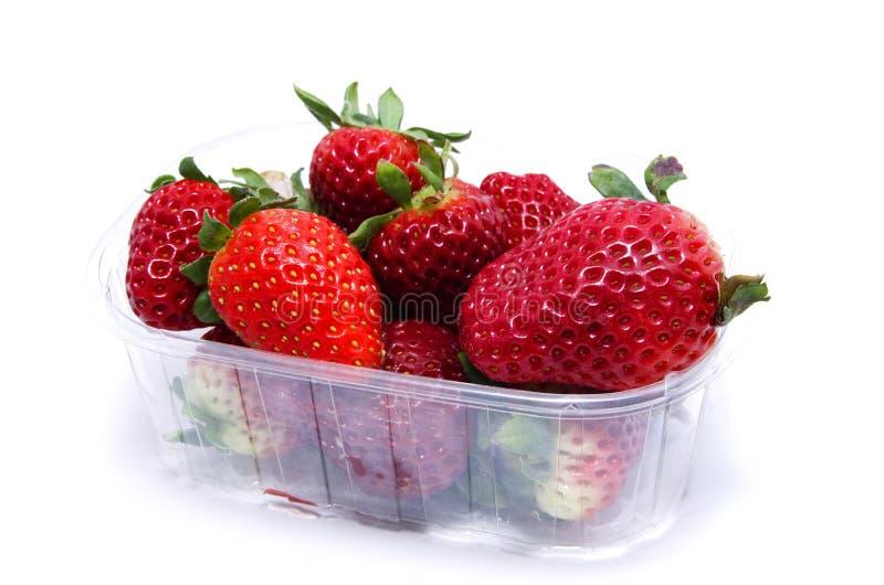 Strwberry photographie stock libre de droits