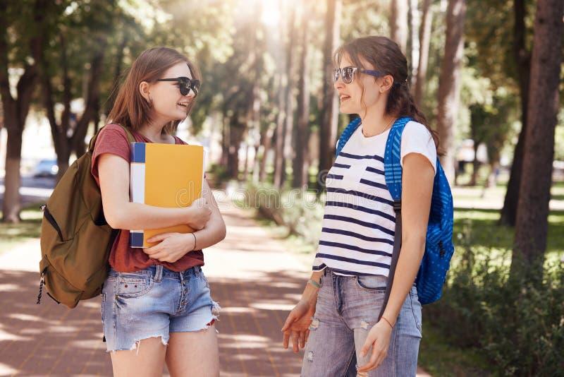 Strzał studenci collegu spotyka przypadkowo w parku, niesie torby i książki, przyjemną rozmowę, gadka o opóźnionej wiadomości prz obrazy stock