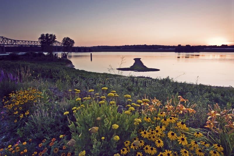 Strzałkowata wyspa na Mississippi fotografia stock