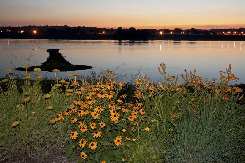 Strzałkowata wyspa na Mississippi zdjęcie royalty free