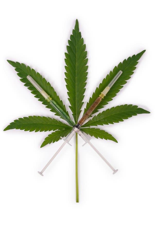 Strzykawka i konopie (marihuany) fotografia royalty free