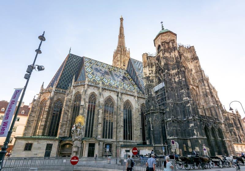 Sts Stephen domkyrka i mitt av Wien, Österrike royaltyfri bild