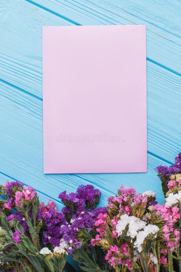 Stubarwni kwiaty i puste miejsce menchie tapetują dla twój teksta zdjęcia royalty free