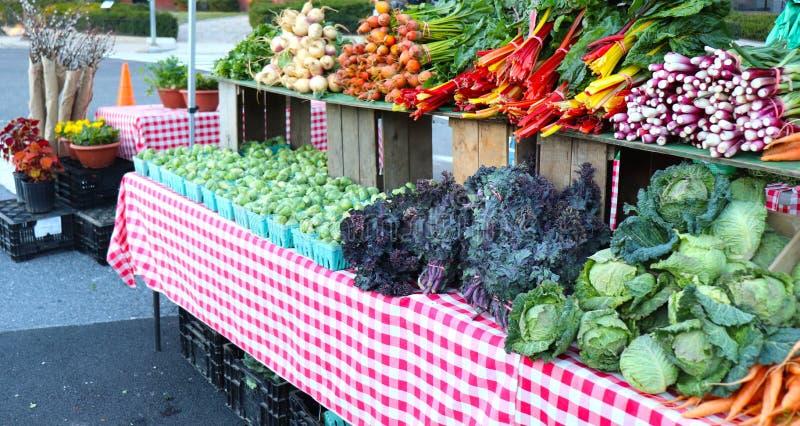 Stubarwni Organicznie warzywa Wystawiający przy rolnika rynkiem obrazy royalty free