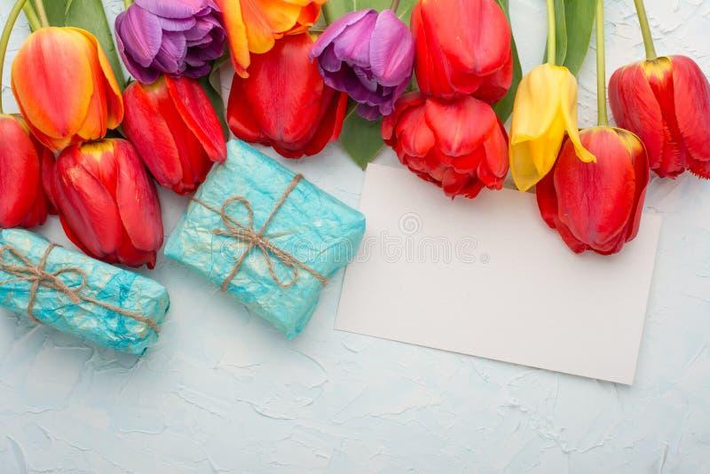 Stubarwni tulipany z prezentami na lekkim tle, odgórnym widoku z pustą przestrzenią dla pisać lub reklamować, obrazy royalty free