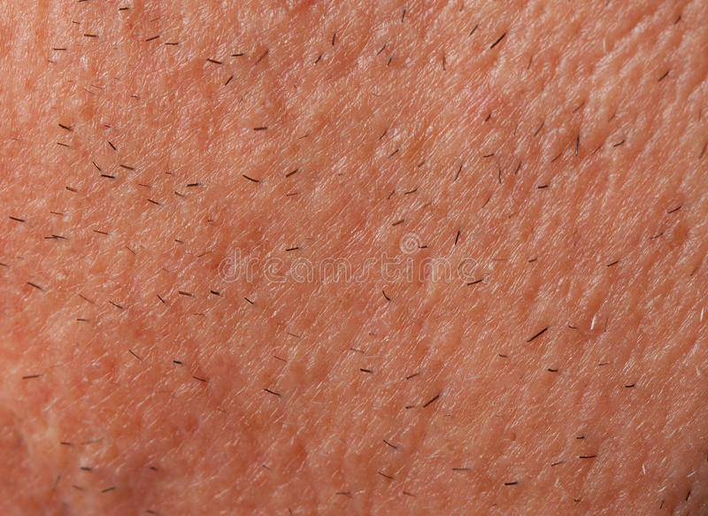 Stubble Royalty Free Stock Images