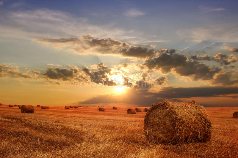 Stubble field and hay bales. Stubble field with hay bales under a spectacular summer sky stock image