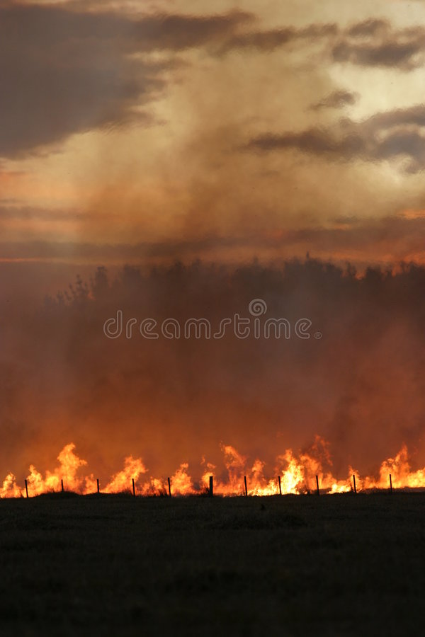 Stubble fire at Dusk. Grass/Stubble fire on a farm in Canterbury, New Zealand, at Dusk stock photos