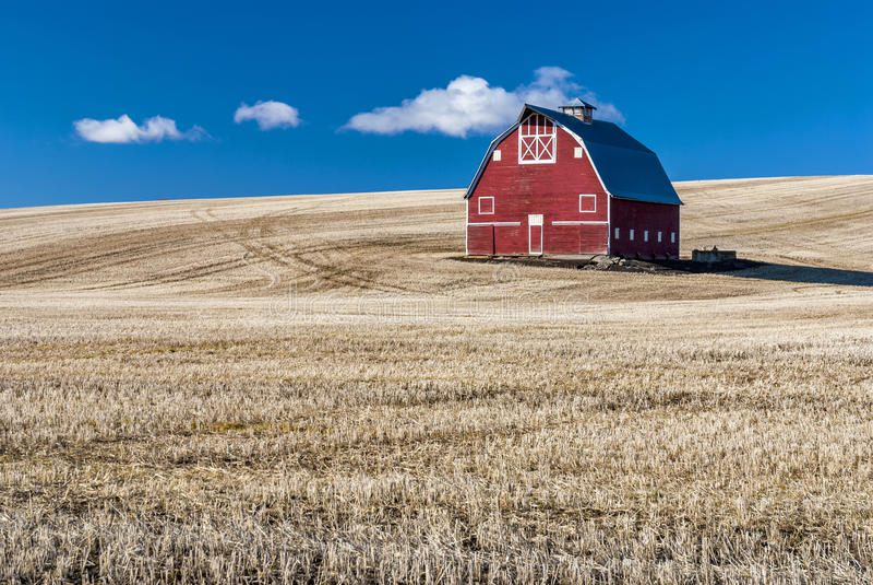 Stuble Feld des blauen Himmels und des Weizens der roten Scheune lizenzfreie stockfotos
