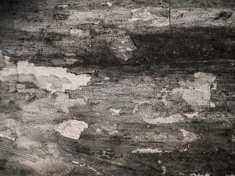 Stucco in bianco e nero di immagine di sfondo, stucco in bianco e nero in bianco e nero/astratto del cemento della carta da parat immagini stock libere da diritti