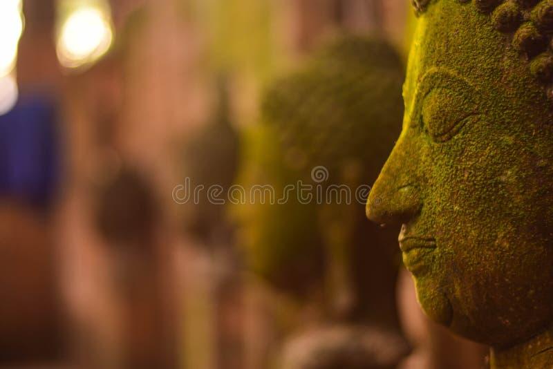 Stucco la déesse de Bouddha de visage sacrée avec de la mousse verte photo libre de droits
