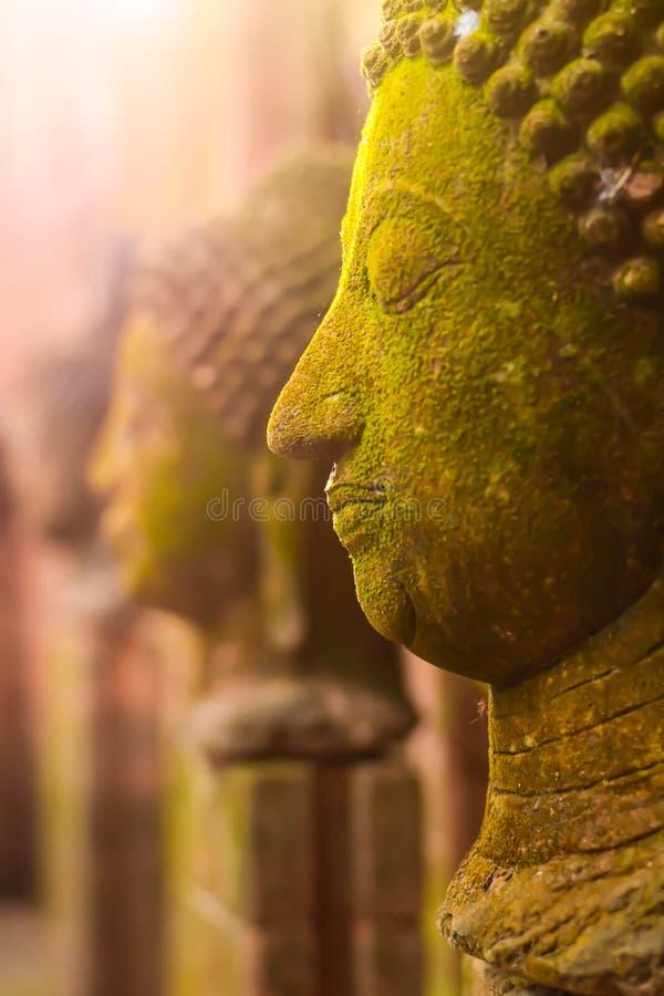 Stucco la déesse de Bouddha de visage sacrée avec de la mousse verte photographie stock