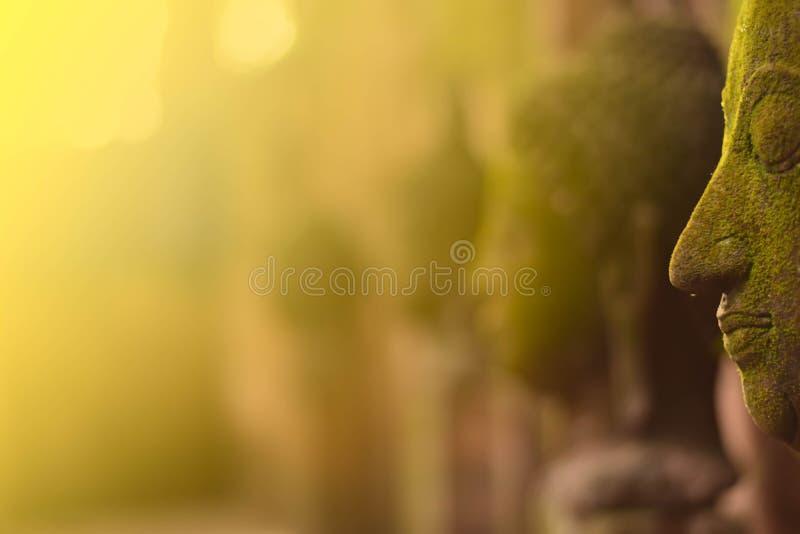 Stucco la déesse de Bouddha de visage sacrée avec de la mousse verte images libres de droits