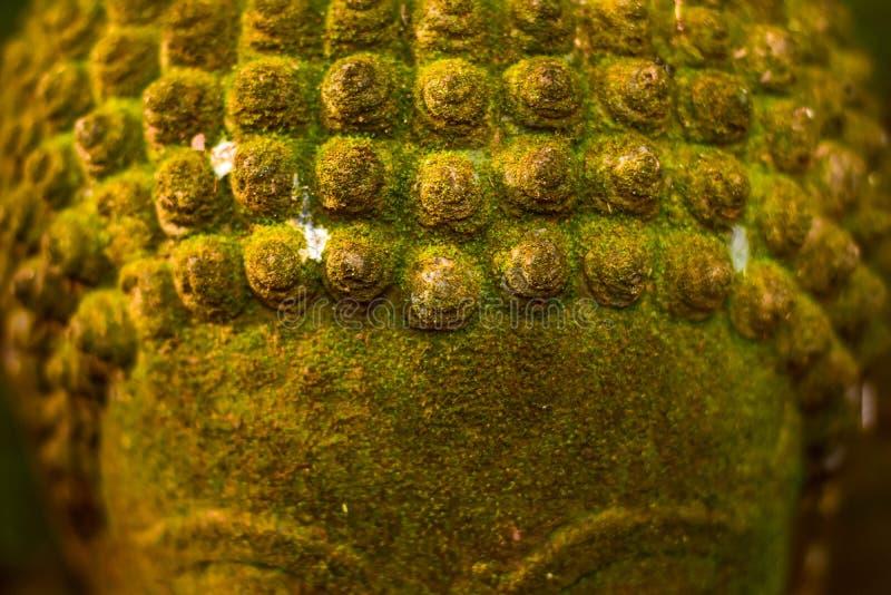 Stucco la déesse de Bouddha de visage sacrée avec de la mousse verte image stock