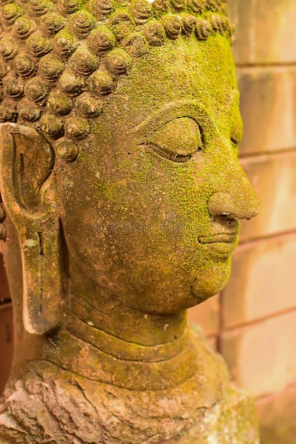 Stucco la dea di Buddha del fronte sacra con muschio verde fotografie stock libere da diritti