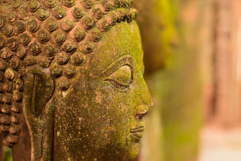 Stucco a la diosa de Buda de la cara sagrada con el musgo verde fotografía de archivo