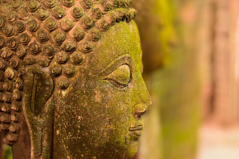 Stuck-Gesichts-Buddha-Göttin heilig mit grünem Moos stockfotografie