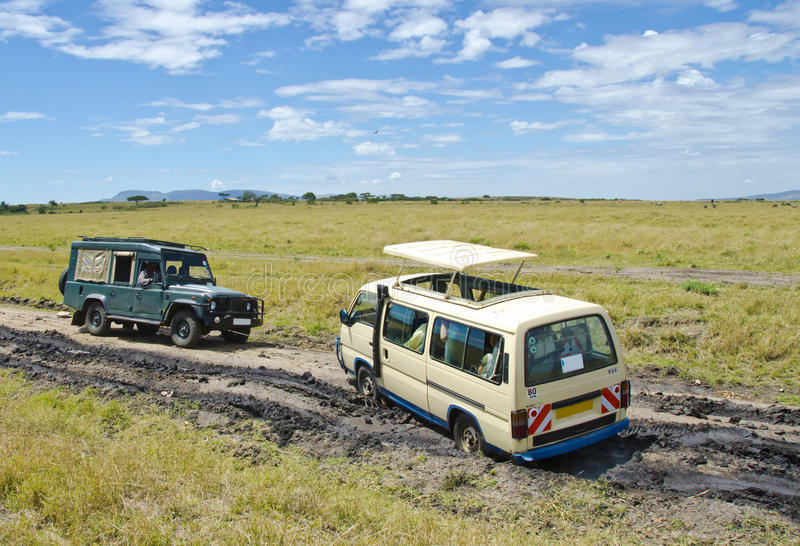 Download Stuck in mud stock image. Image of african, trying, mara - 28280693