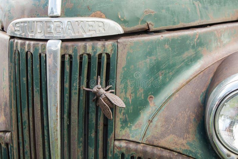 Studebaker szczur Rod, Gryźć komarnicami fotografia stock