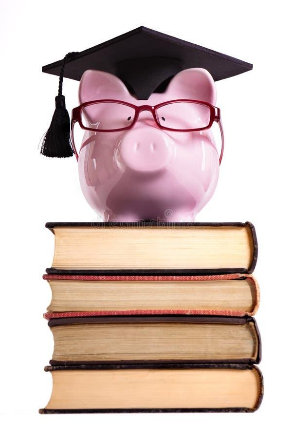 Studencki szkoła wyższa absolwenta prosiątka bank odizolowywający na białym tle, frontowy widok, pionowo zdjęcie stock
