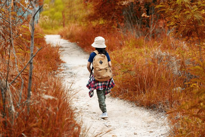 Student asian girl and traveler with backpack adventure holding map to find directions in the autumn jungle forest outdoor for stu stock images