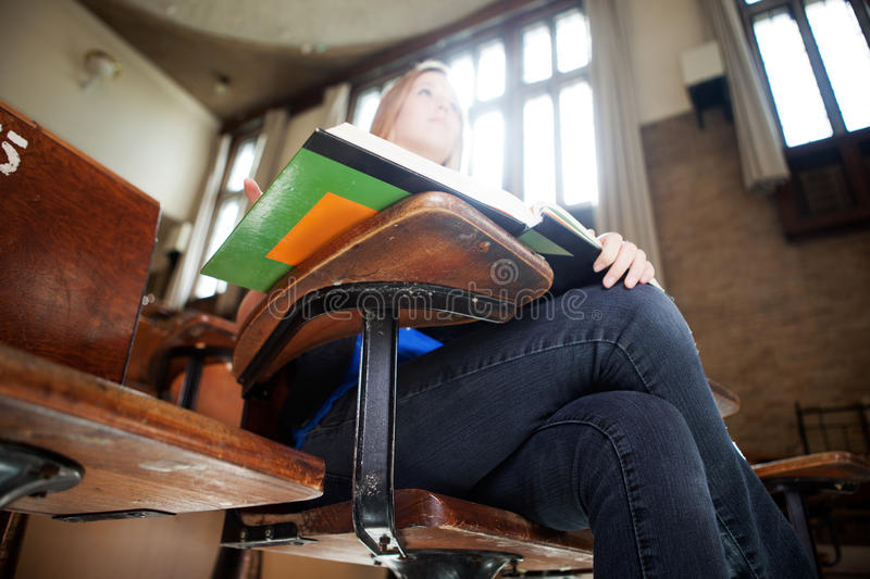 Student in Class royalty free stock images
