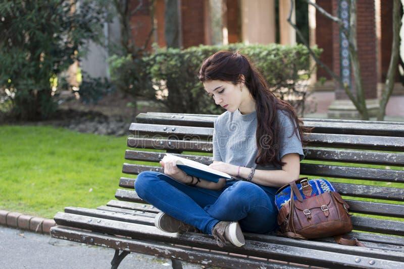 Student, der auf hölzerner Bank und gelesenen blauen dem Buch, im Freien sitzt stockbilder