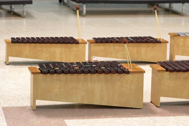 Student Diatonic Xylophones met houten hamers stock afbeelding