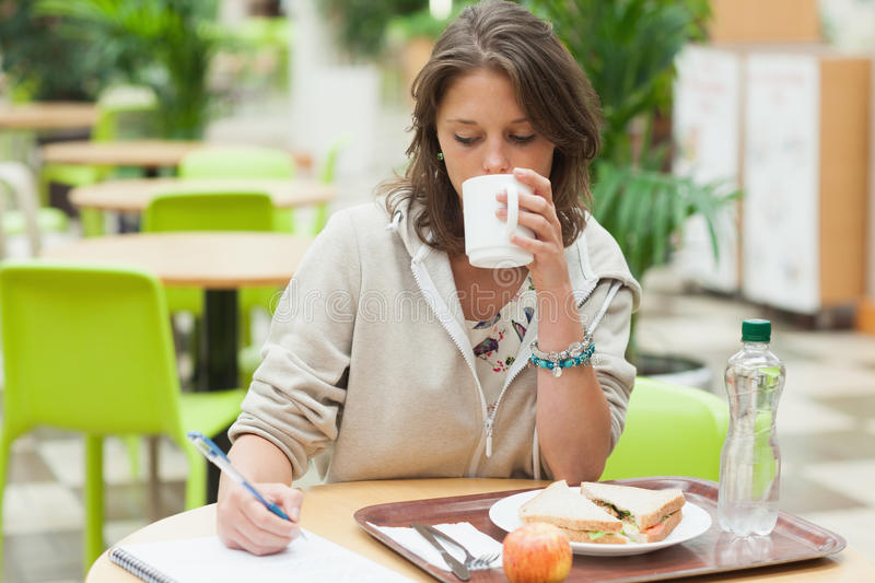 Student doing homework and having breakfast in cafeteria royalty free stock photos