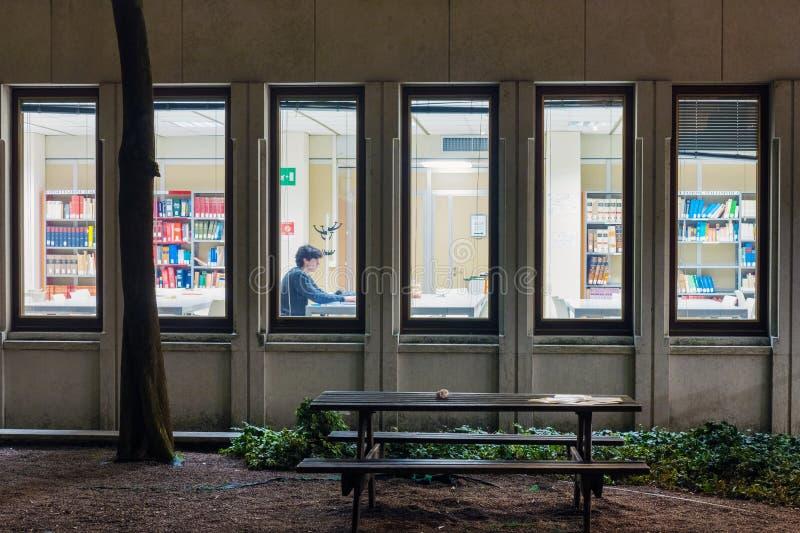 Student ist Lesebuch in der Bibliothek lizenzfreie stockfotografie