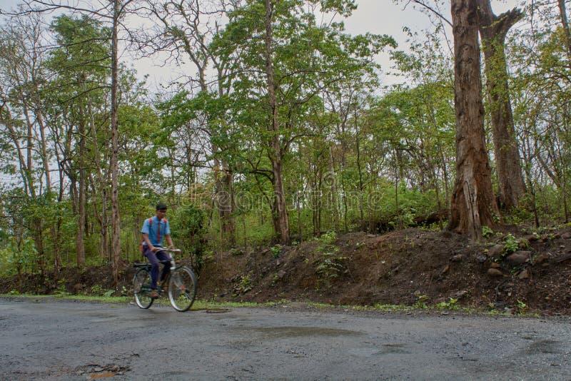 Student på cykeln i dandeliskogväg på nära yellapur karnataka Indien Asien arkivfoton
