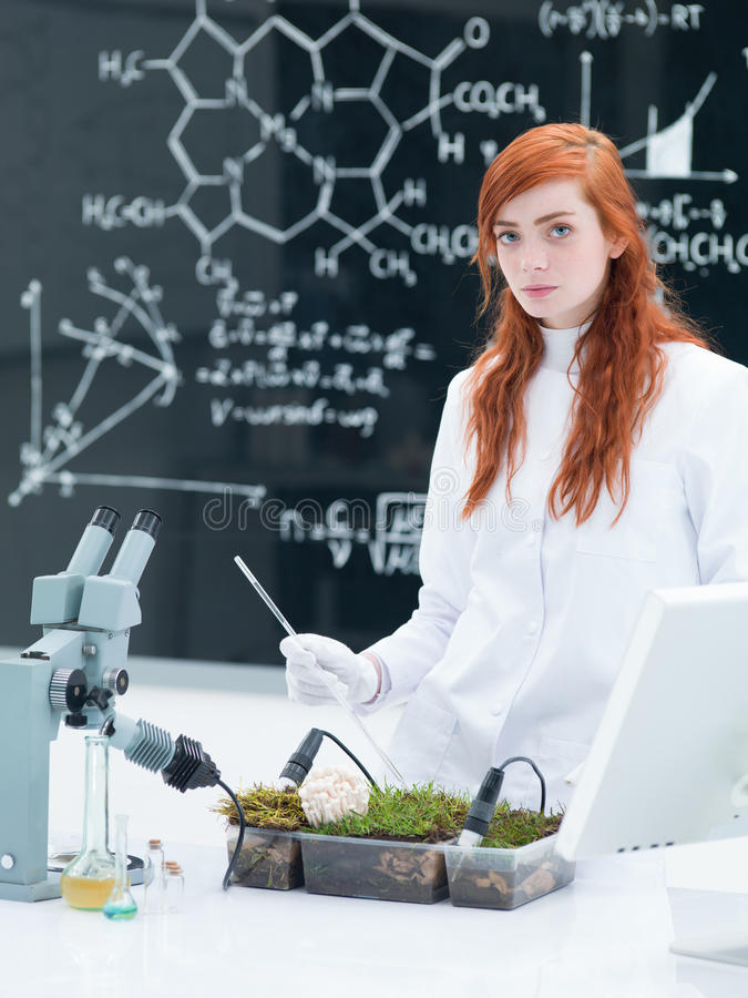 Download Student Plant Analysys Stock Photography - Image: 31257962